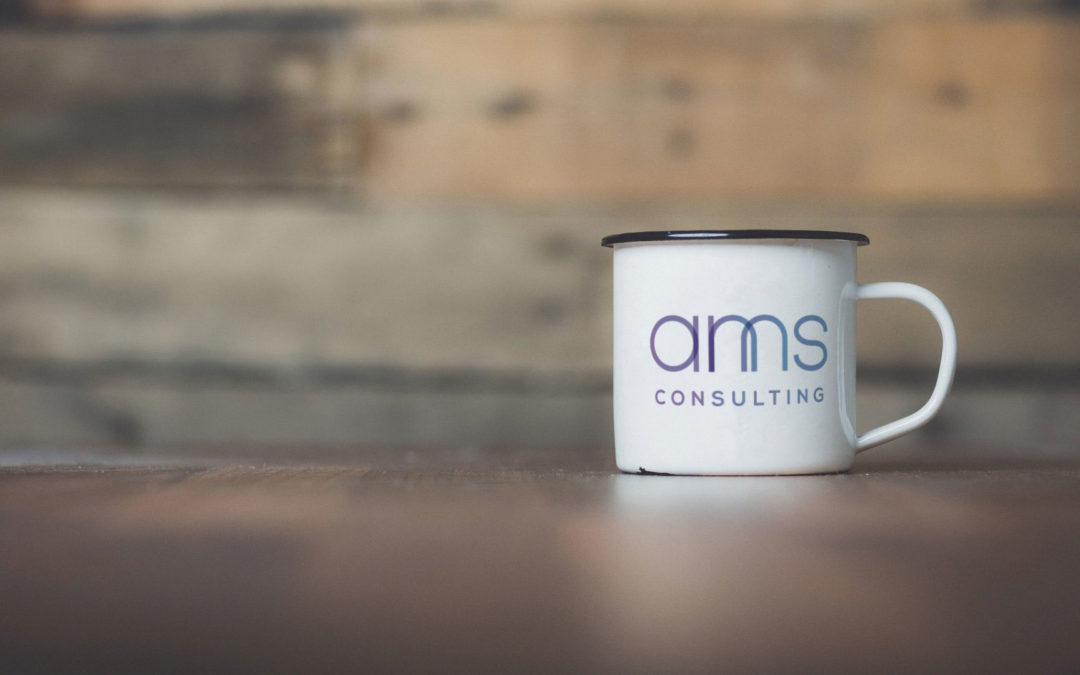 AMS Consulting
